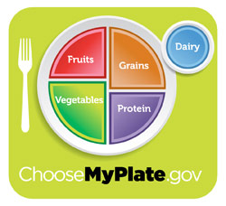 Essential Food Groups: Fruits, Grains, Vegetables, Protein and Dairy